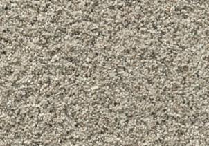 Stainmaster carpet | Flooring 101