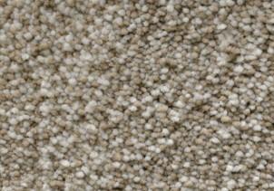 Stainmaster plush carpet | Flooring 101