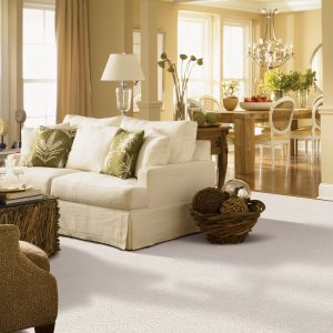 Interior of living room with sofa | Flooring 101