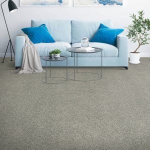 Sofa on Carpet | Flooring 101