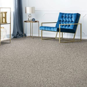Blue sofa on Carpet | Flooring 101
