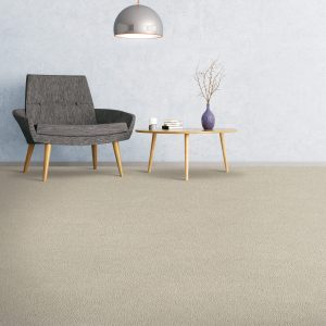 Grey Carpet flooring | Flooring 101