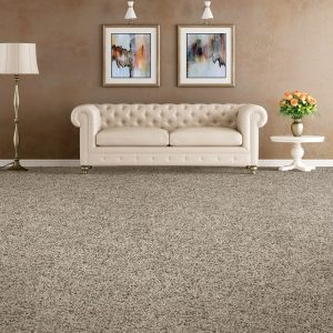 Couch on Carpet | Flooring 101