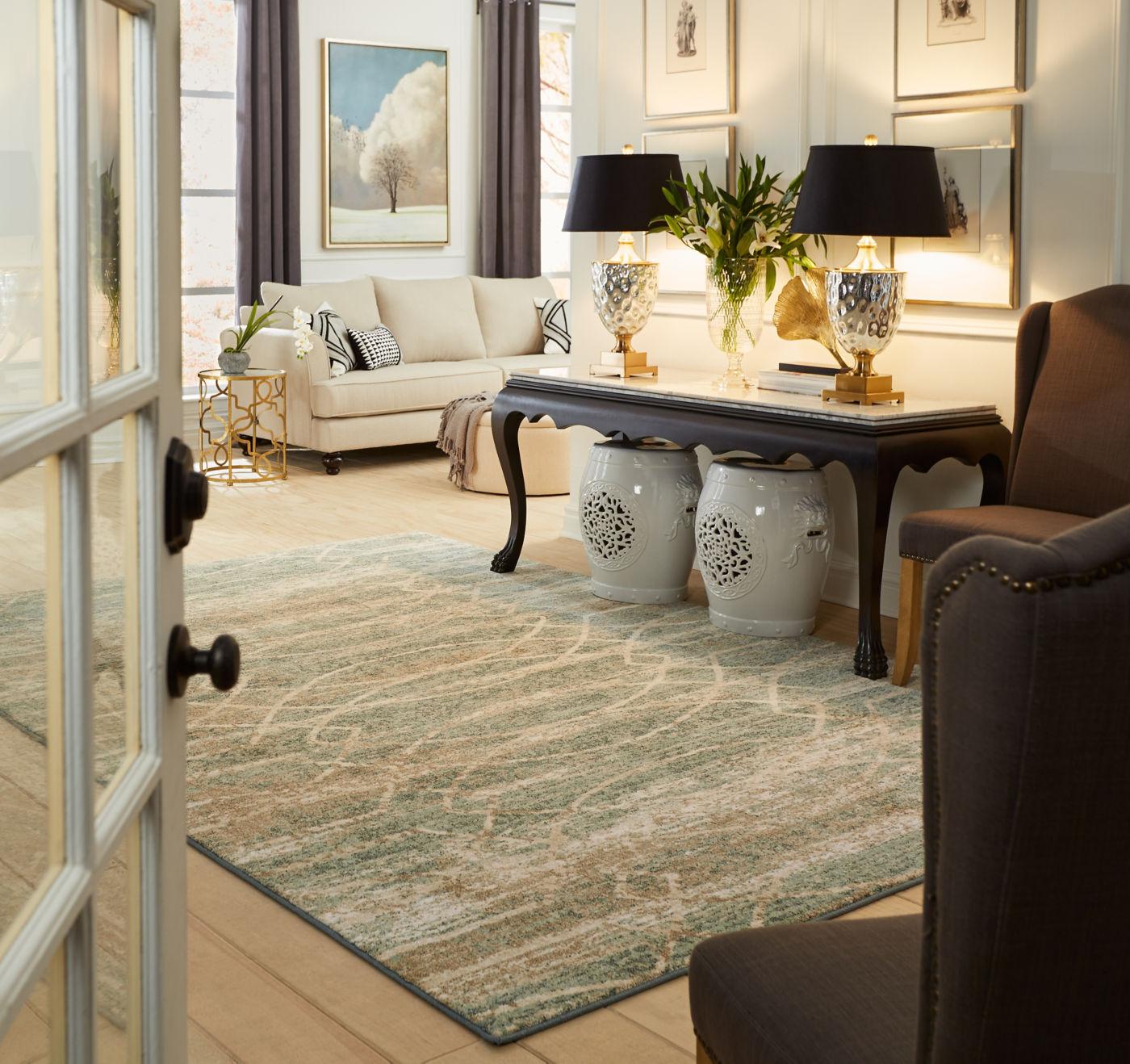 Area Rug in living room | Flooring 101