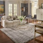Area Rug in living room | Flooring 101
