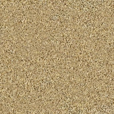 Frieze Carpet | Flooring 101